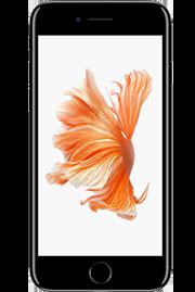 iphone-nice